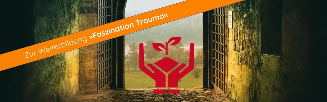 Weiterbildung »Faszination Trauma« Traumatherapie Traumapädagogik