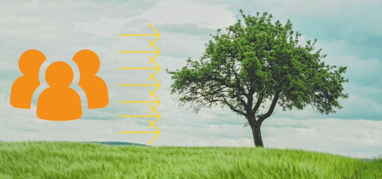 7 wege zur effektivität Stephen Covey