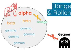Rang-Rollen-Gruppendynamik-Teamentwicklung-alpha-beta-omega (1)