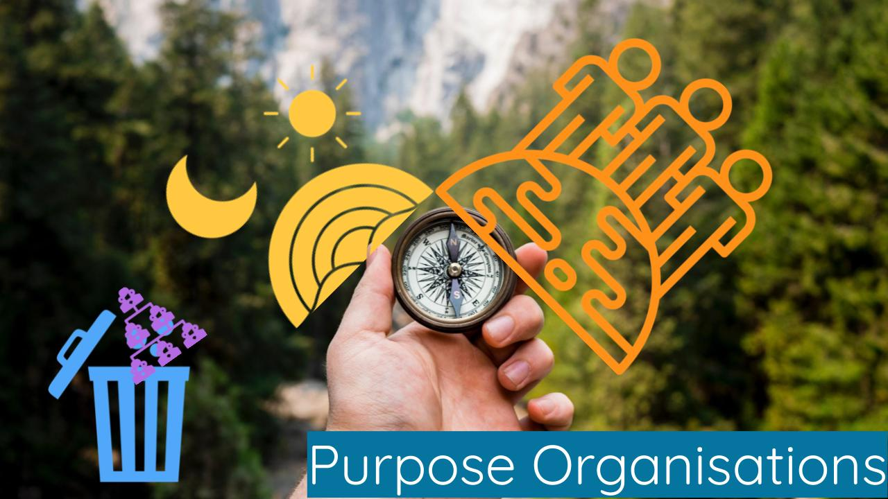 Purpose Organisations - Change Management - Teal - Organisationstransformation