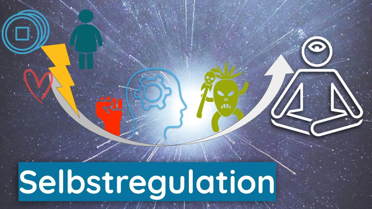 Selbstregulation lernen - Therapie - Trauma-Integration - Coaching - Beratung - Psychologie - Unternehmen